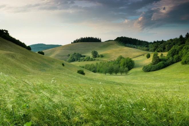 KOSMETYKA AJURWEDYJSKA: W stronę natury – sięgnijmy do prastarych źródeł (cz. 1)